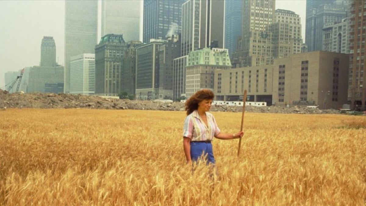 Agnes Denes, Wheatfield, 1982.